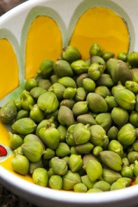 capers in Sicily
