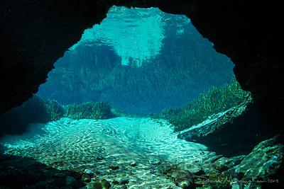 David Moynahan Photography: Florida &emdash; Jackson Blue Cavern Vista