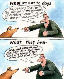 gary larson what dogs hear