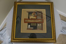$250 VALUE - 2D framed metal wallhanging by artist Jo Nelson