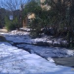 Bouldin Creek in the snow 2011, south side of Cumberland