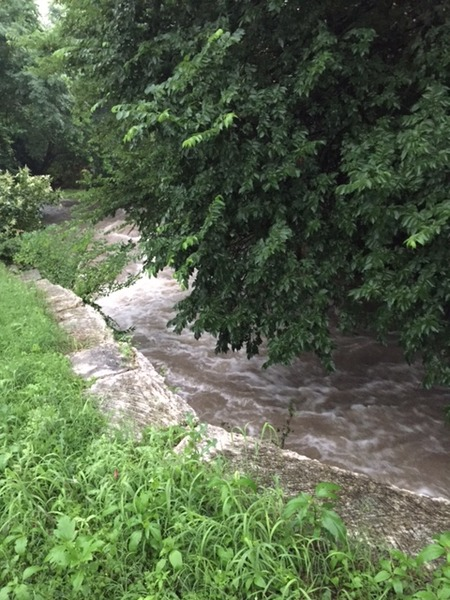 East Bouldin Creek during May 2015 rain 2