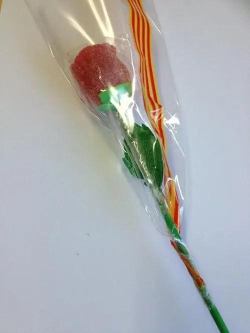 Rosa Goma Sant Jordi