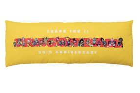 Prize C - Cushion