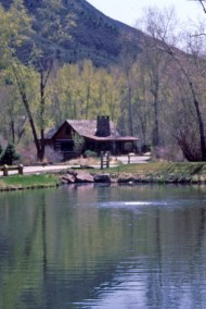 Typical Cabin