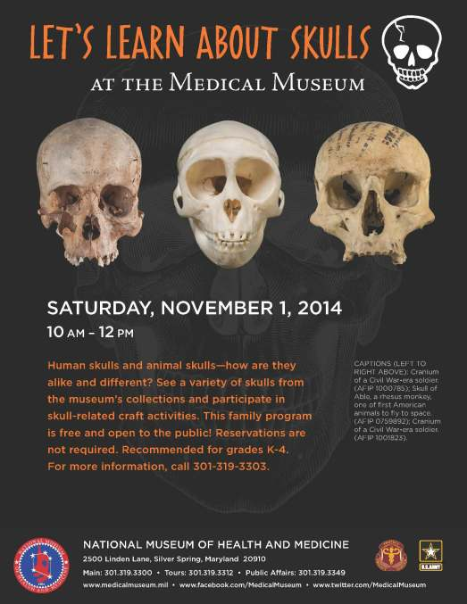 national museum of health and medicine - skull program 2014