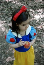 Snow White Costume Tutorial and 10 others