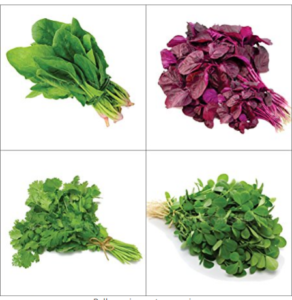 Only For Organic Combo Of Leafy Vegetable (Four Varieties 150 Quantity Each) at rs.101