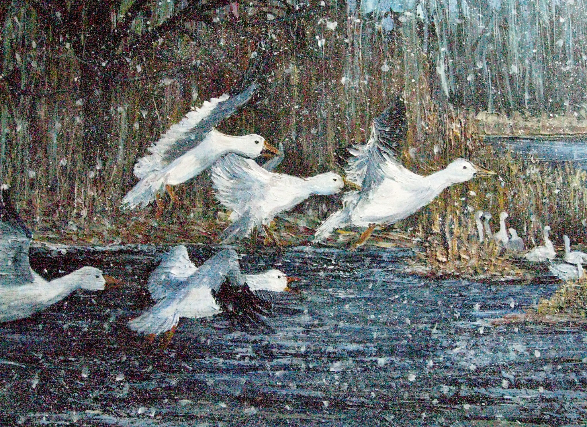 Snow Geese – SOLD