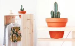 DIY | Créer un jardin...sur son armoire !