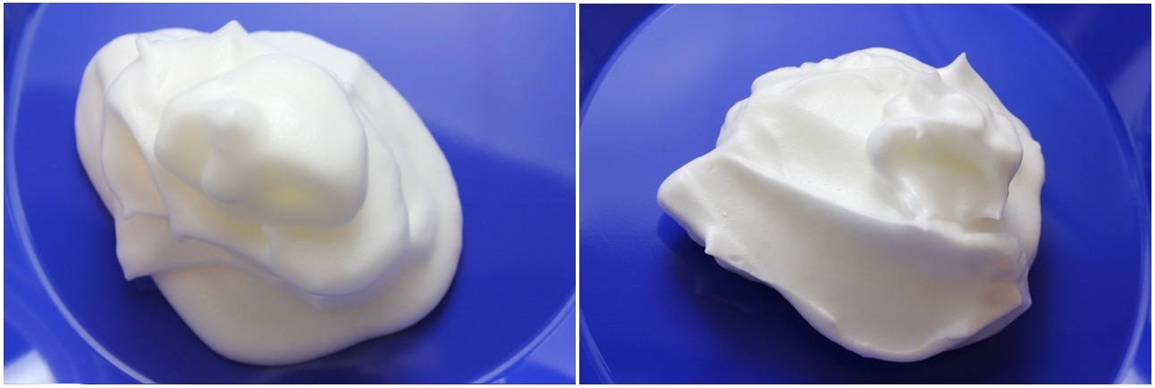 Egg Foam (from carton; raw)
