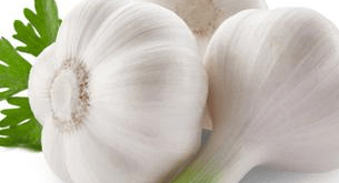 Lahsun garlic fayde upyog
