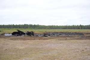 F-22 Tyndall crash site