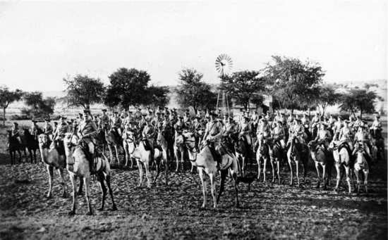 German Camel Cavalry