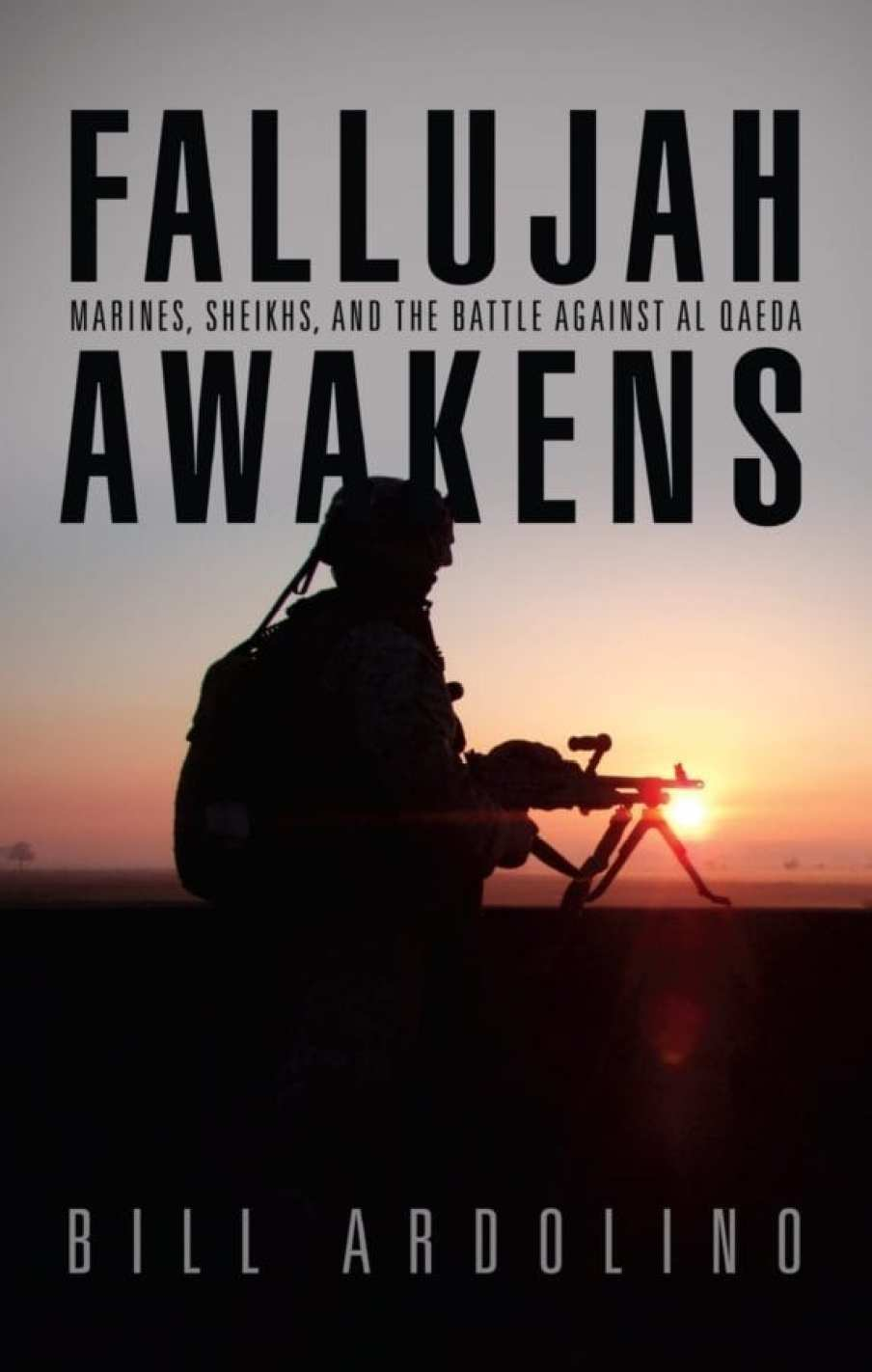 Fallujah Awakens: Marines, Sheiks, and the Battle Against al Qaeda