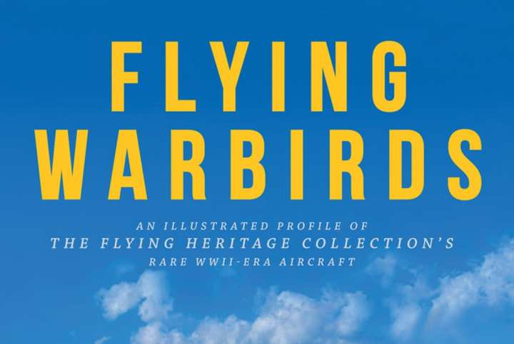 Flying-Warbirds-cover-detail