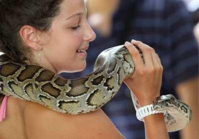 Planet Skincare Anti-Ageing Moisturiser, veneno de serpiente para las arrugas
