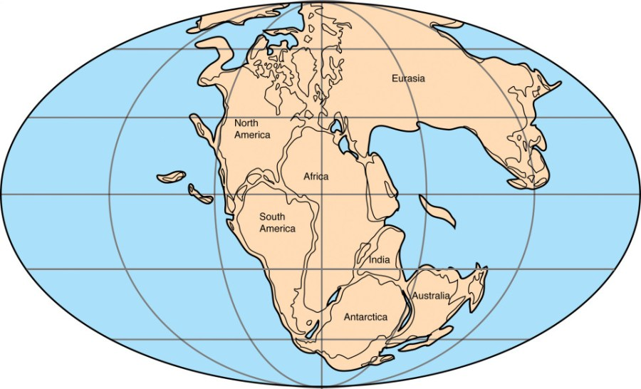 Pangaea drifted for a good reason