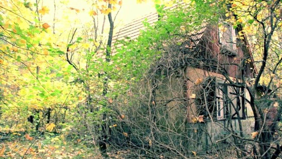 Urbex – das kleine Haus im Wald