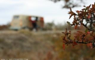 de buenos aires a ushuaia a dedo ruta 3