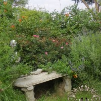 Create a Country Garden