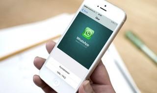 WhatsApp se actualiza para iOS 7, entre otras cosas