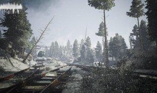 Kholat_Forest
