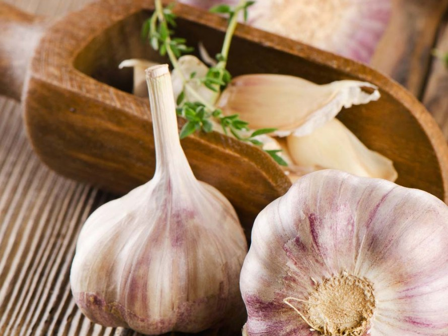 Garlic Health Benefits