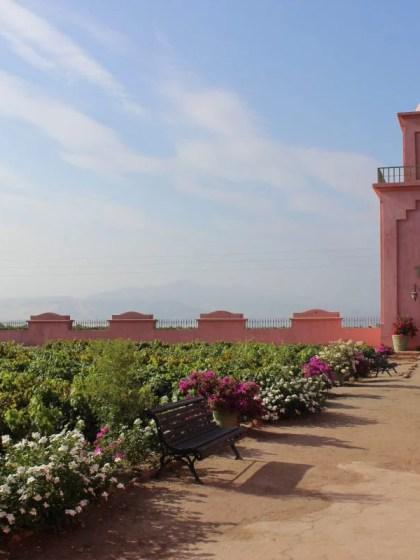 Tacama Weingut in Ica Peru