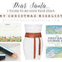 My Christmas Wish List + Giveaway
