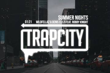 Wildfellaz & Denis Elezi - Summer Nights