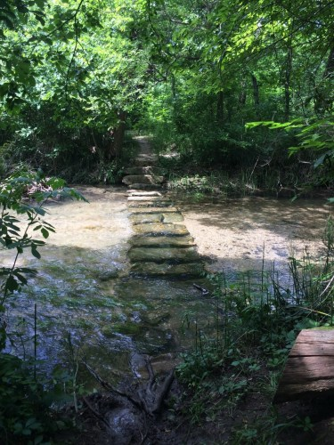 An adventurous path in the Chickasaw National Recreation Area