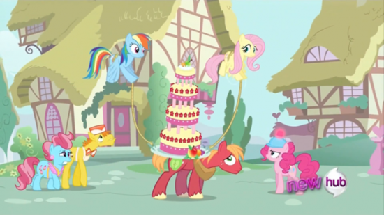 Rainbow and Fluttershy helping (S02E24)