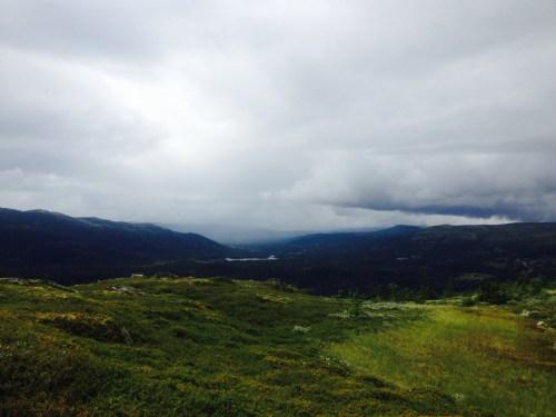 Norway dervynas trip advisor  wild nature
