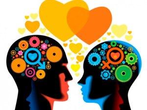 cerebro-organo-sexual