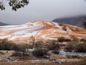 cayo-nieve-en-el-desierto-del-sahara