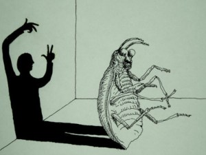 cucarachas-01