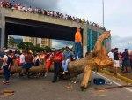 ministerio-público-tala-árboles