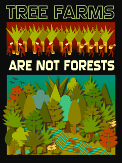 tree farms, deforestation, palm oil, Indonesian forests, ecology