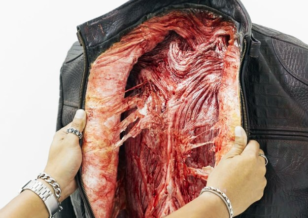 PETA behind the leather