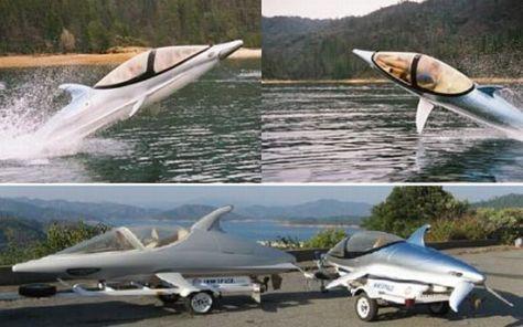 dolphin 1 kvnsA 3858