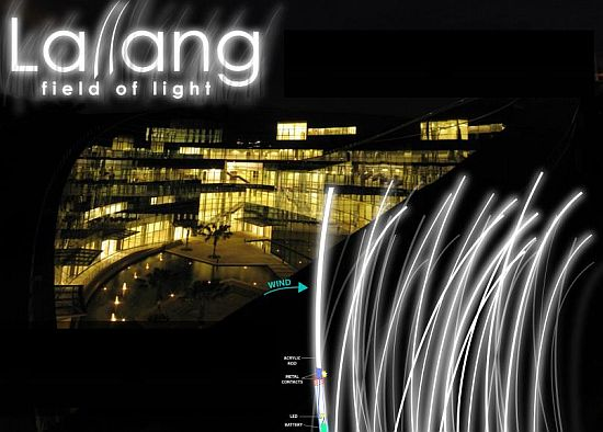 lallang wind light 01
