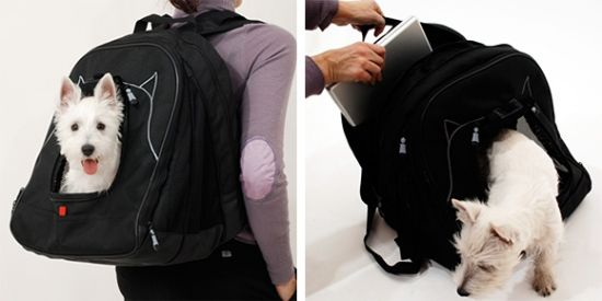pet laptop backpack 01
