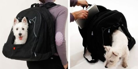 pet laptop backpack 01