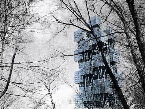 urban tree 06