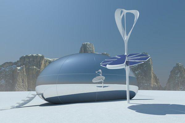 Polar capsule