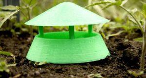Slug Trap  by Alex English