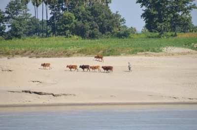 Irrawaddy River scenes, Myanmar