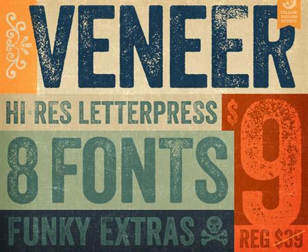 VeneerGraphic1