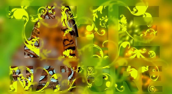 nature_blur_13